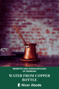 BENEFITS AND DISADVANTAGES OF DRINKING 1